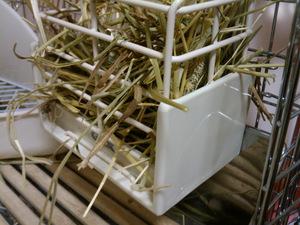 チモシーボックス