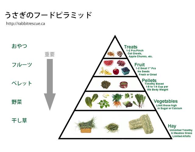 foodpyramid2.jpg