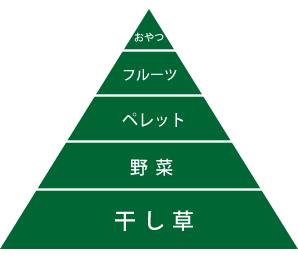 フードピラミッド