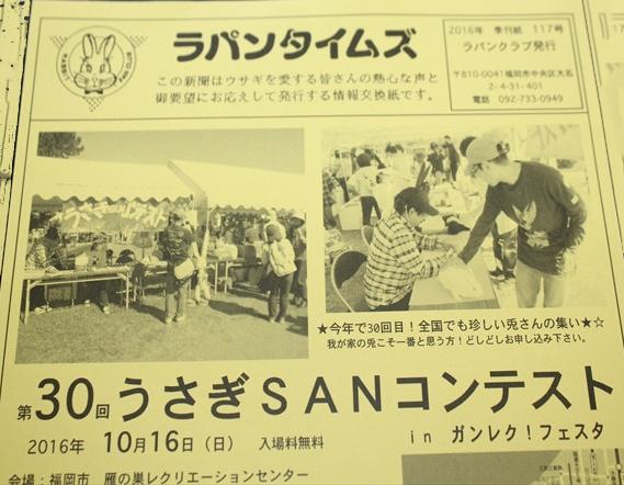 うさぎSUNコンテストに参加予定!