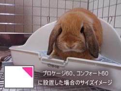 abシートン うさぎのトイレ(三角タイプ)2